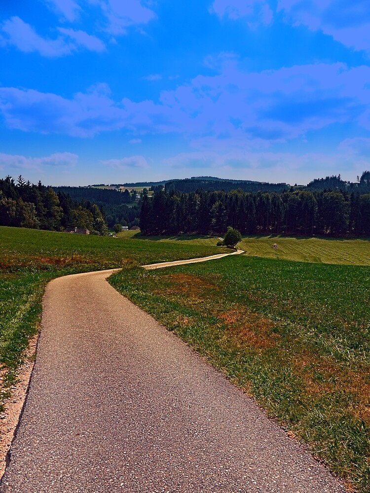 Yet another boring hiking trail picture   landscape photography by Patrick Jobst
