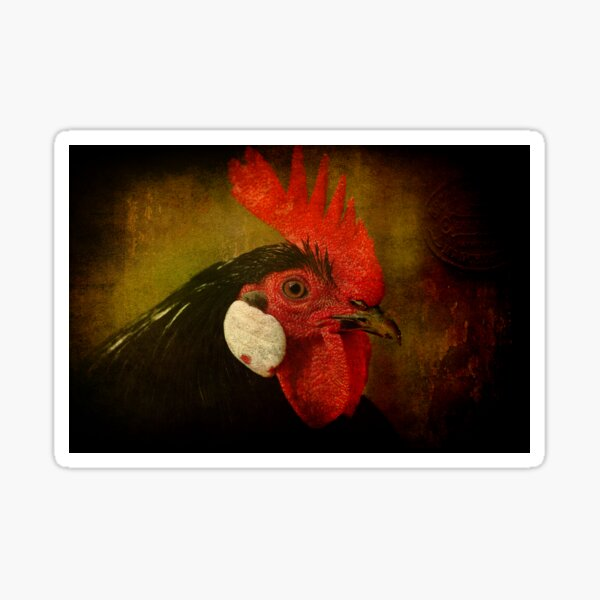Rocky Rooster Sticker