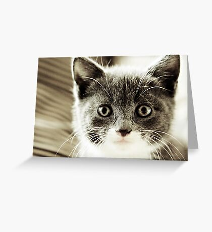 Maiya Greeting Card