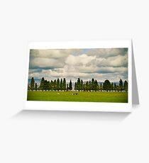 Little Trees Big Skies Greeting Card