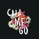 Chamego by GalaxyEyes