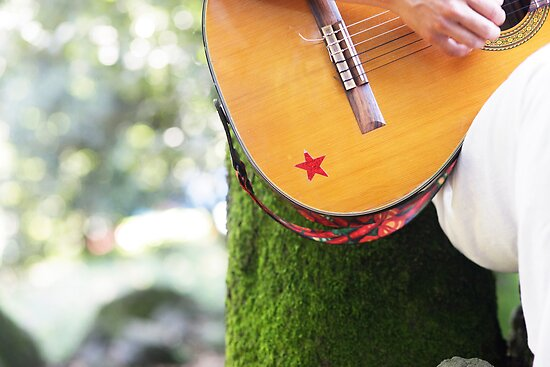 guitar player in full nature by Wari Om  Yoga Photography