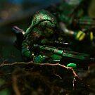 Jungle Spec Op 2 by Shobrick