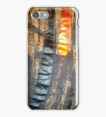 arteology iphone fine art 42 iPhone Case/Skin