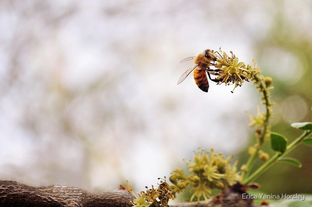 Busy Bee by Erica Yanina Horsley