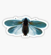 Blue Moth Sticker