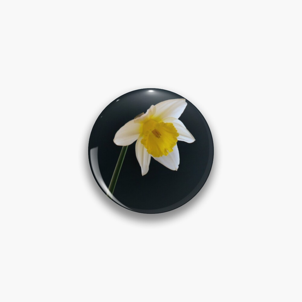 Flowers From The Darkfield - Daffodil Pin
