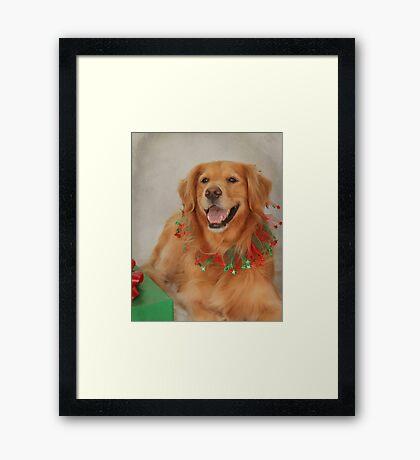 Abigail's Christmas Portrait Framed Print