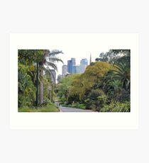 City amongst the trees Art Print