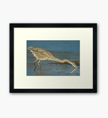 The Heron moved! Framed Print