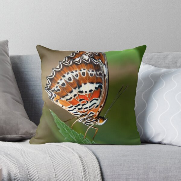 Orange Lacewing, Northern Territory, Australia Throw Pillow