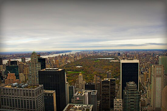 Central Park, New York City by Shutter and Smile Photography