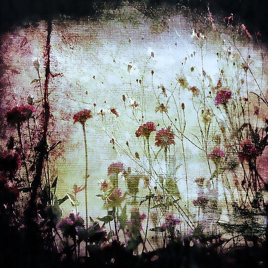 Wonderland   by Trish Mistric