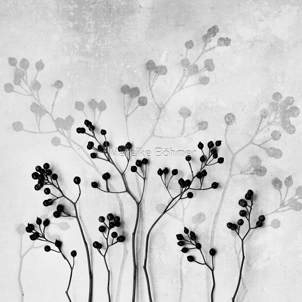 Abstract Flowers 5 by Mareike Böhmer