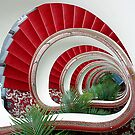 Spiral Staircase  by Cindy McDonald