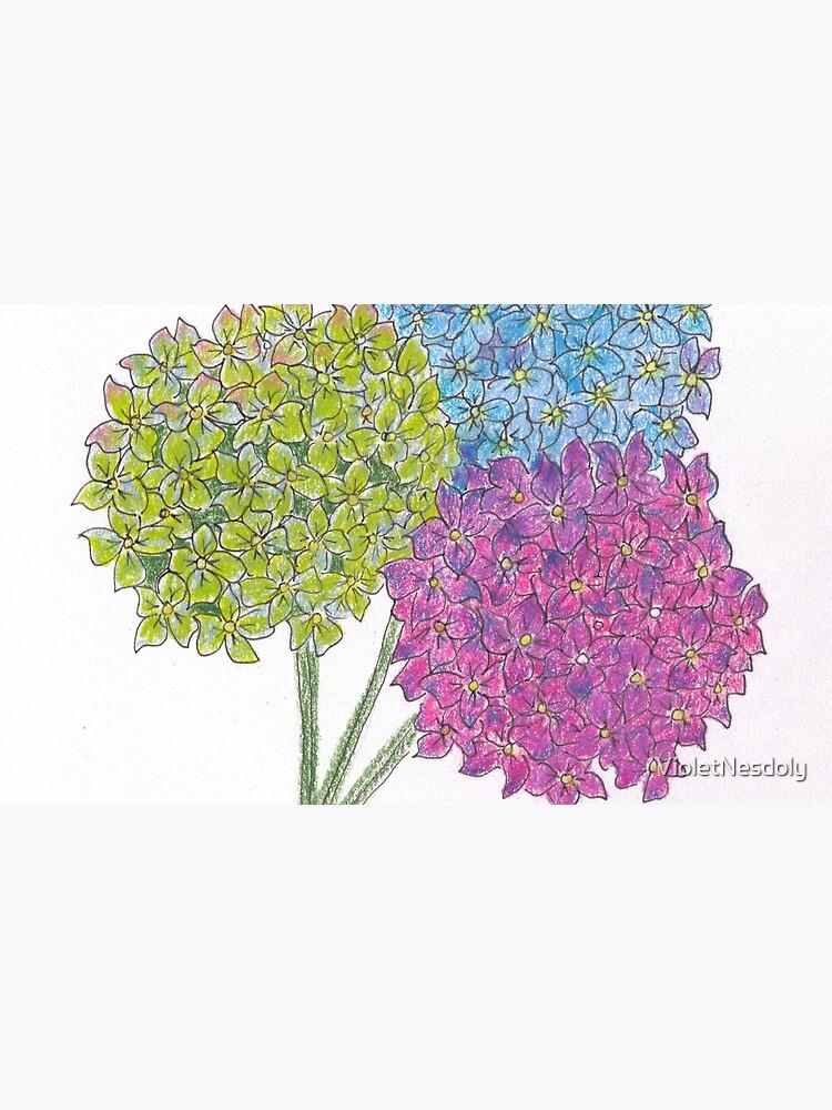 Hydrangea - Gratitude by VioletNesdoly
