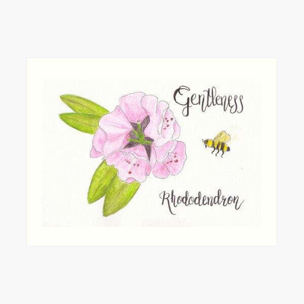 Rhododendron - Gentleness Art Print