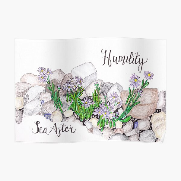 Sea Aster - Humility Poster