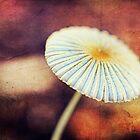 Magicus Fungis by Ellaide