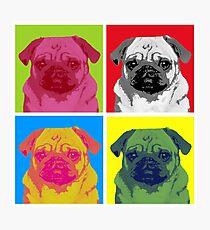 Lámina fotográfica Pop Art Pug