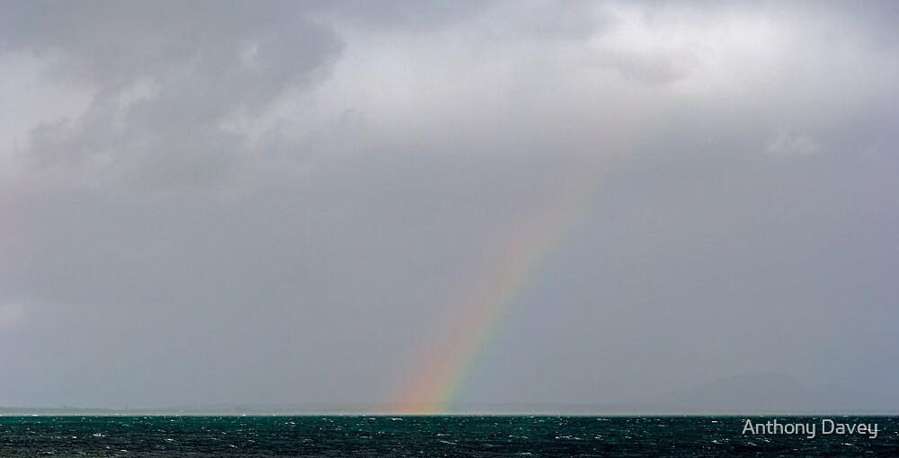 Rainbow Panorama by AnthonyDavey