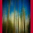 Palms Blur iPhone 4 Case by Anne  McGinn