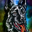 German shepherd by andy551