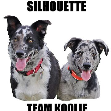 Silhouette Team Koolie, Kyra & Luca by KoolieClubAust