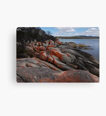 Orange coloured granite Canvas Print
