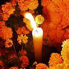 Marigolds de muertos by ecotterell