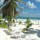 Beach break by ecotterell