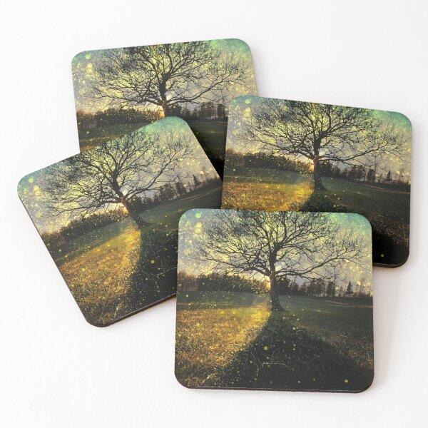 Magical fireflies dreamy landscape Coasters (Set of 4)