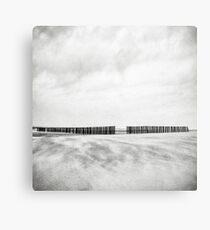 Pole Canvas Print