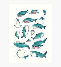 Lámina artística ¡tiburones ballena!