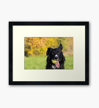 Living in a yellow and green world Framed Print