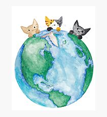 Earth Day Kitties Photographic Print