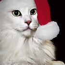 Believe In Santa by ibjennyjenny