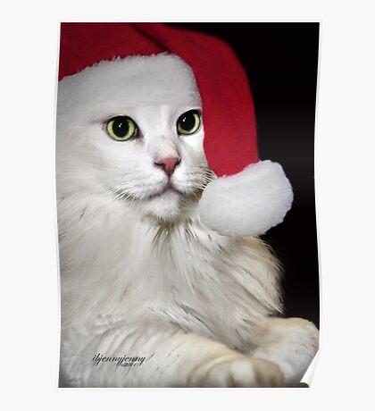Believe In Santa Poster