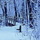 The Footbridge by jules572