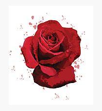 Rose Vector (illustrator) Photographic Print