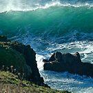 Beach Combers Nightmare by Nick Boren