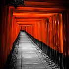 Fushimi Inari Shrine by Michelle McConnell