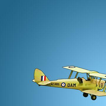De Havilland Tiger Moth, ZK DAM by redwoodkiwi