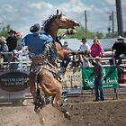 Bucking Horse Sell by pdsfotoart