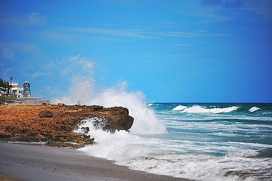 Shoreline by joevoz