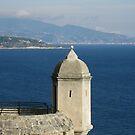 Monaco Tower With Crooked Slit Window by John Douglas