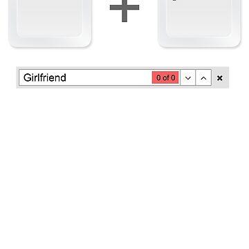 Web Developer Control Find Girlfriend by jroi