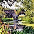 White Mill Bridge by Clive