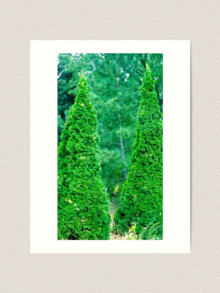 Alternate view of We THREE TREES of Orient Are...... Art Print