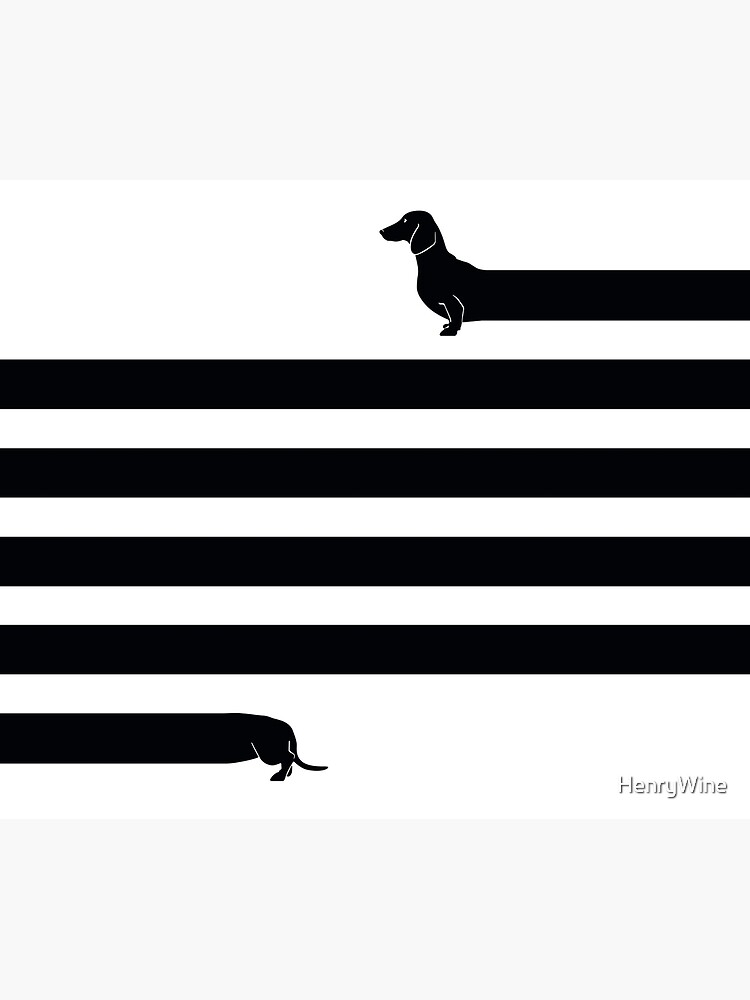 (Sehr) Langer Hund von HenryWine